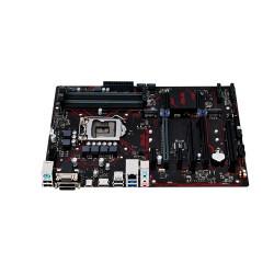 ASUS PRIME B250-PLUS-42495